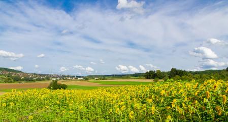 Landschaft bei Kirchheim unter Teck