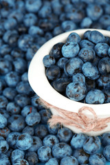 Tasty ripe blueberries in bowl, close up