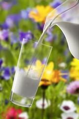 Milch ins Glas einschütten, blütende Wiese