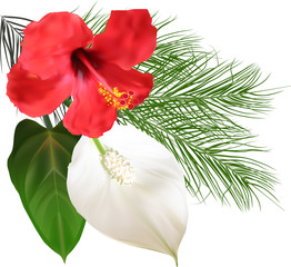 illustration with red and white tropical blooms