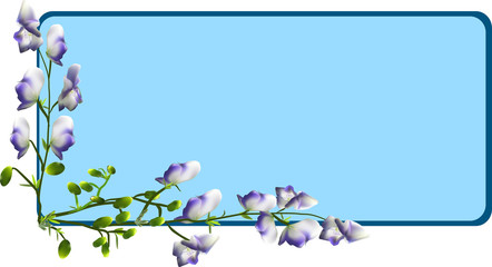 group of wild flowers on blue frame