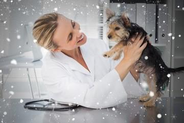 Composite image of veterinarian examining dog