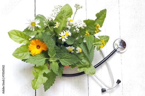 Fresh herb and stethoscope alternative medicine concept - 70561562