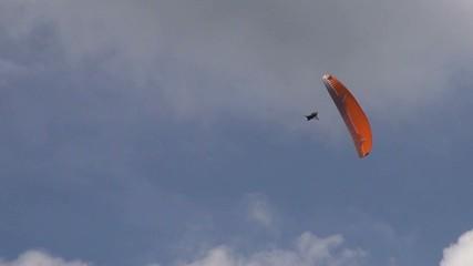 Stunts, Parasailing, Paragliding, Extreme Sports