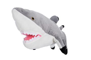 Hai Fisch als Stofftier isoliert und freigestellt