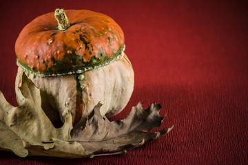 pumpkin, autumn background