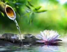 jardin zen avec des pierres de massage et nénuphar