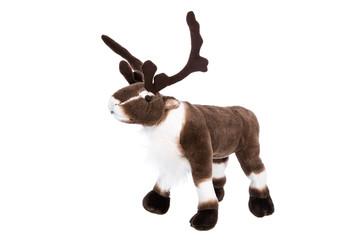 Dekoration Weihnachten: Hirsch oder Rentier freigestellt