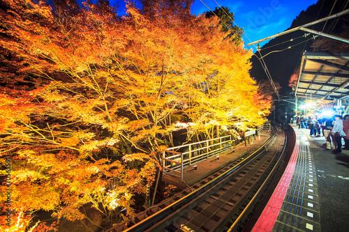 Foto op Aluminium Beijing Kifune Shrine
