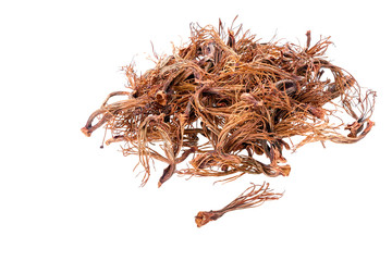 BOMBAX CEIBA LINN - dried androecium