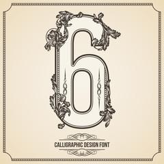Calligraphic Font. Number 6. Vector Design Background