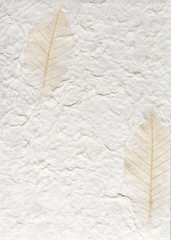 Handmade paper with leafs
