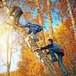 Boys on the Tree