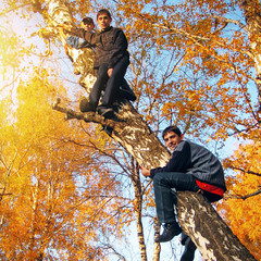 Boys on the Tree