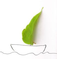 green leaf and drow ship