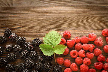 raspberries and  blackberry