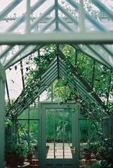 A wooden frame conservatory with plants.