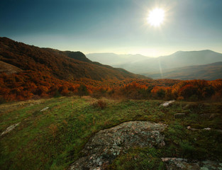 Autumn forest in the mountains under the blue sky