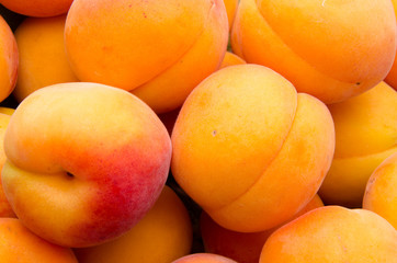 Background of apricots