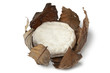 French Banon cheese in chestnut leaves