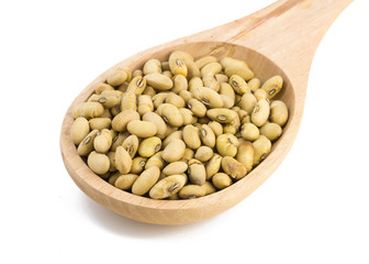 soybean on wooden spoon