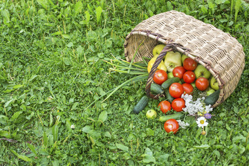Basket with vegetables spilling on the ground.
