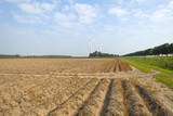Furrows in a field at fall poster