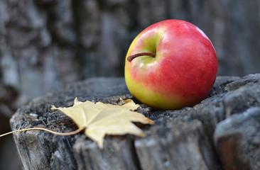 Яблоко на пне.