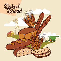 Baked bread advertising illustration