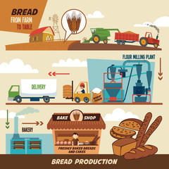 Bread production stages