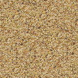 Unpolished Rice Background. Seamless Texture. poster