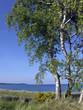 Leinwanddruck Bild - Insel Rügen
