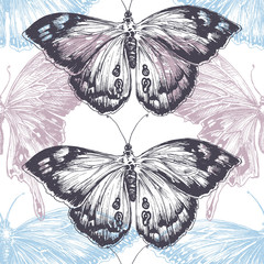 Hand drawn butterfly seamless pattern, texture pastels over whit