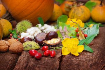 Herbstfrüchte, Erntedank