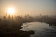 Beautiful tranquil landscape of misty swamp lake