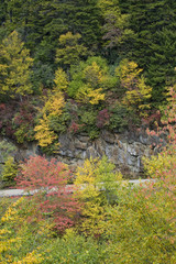 Mountain Road In Early Autumn