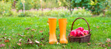 Closeup of yellow rubber boots and basket with red apples in the