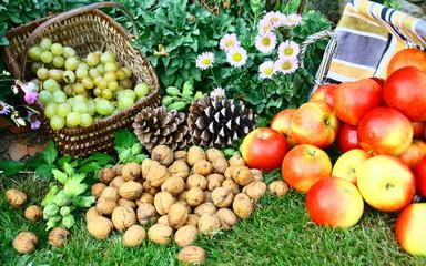 raisin blanc,noix,pommes,fruits de saison dans le jardin