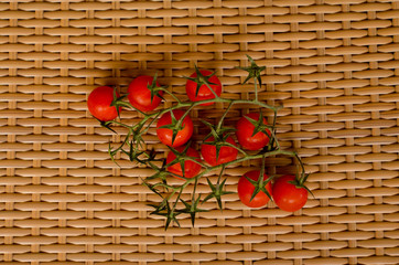 branch of tomatoes cherry