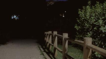 Background establishing shot park night 07
