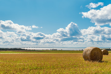 Hay bales on a farm along the ocean with the Confederation Bridg