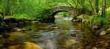 Dartmoor Bridge - 70596789