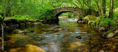 Leinwandbild Motiv Dartmoor Bridge