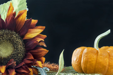 Fall themed still with black background and room for copy space