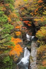 紅葉のみたらい渓谷