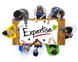 Group of People Discussing About Expertise