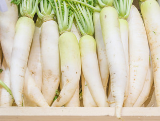 white radish harvested products on wooden planks