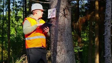 Lumberjack writing near marked tree in forest
