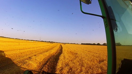 Video from a Moving Harvester