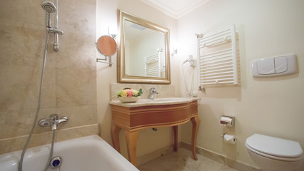 luxury bathroom interior